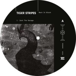 Back In Black EP - Tiger Stripes